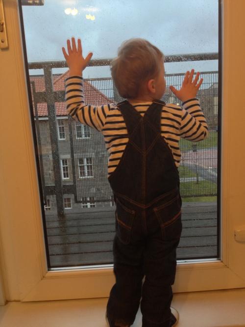 Finlay at window