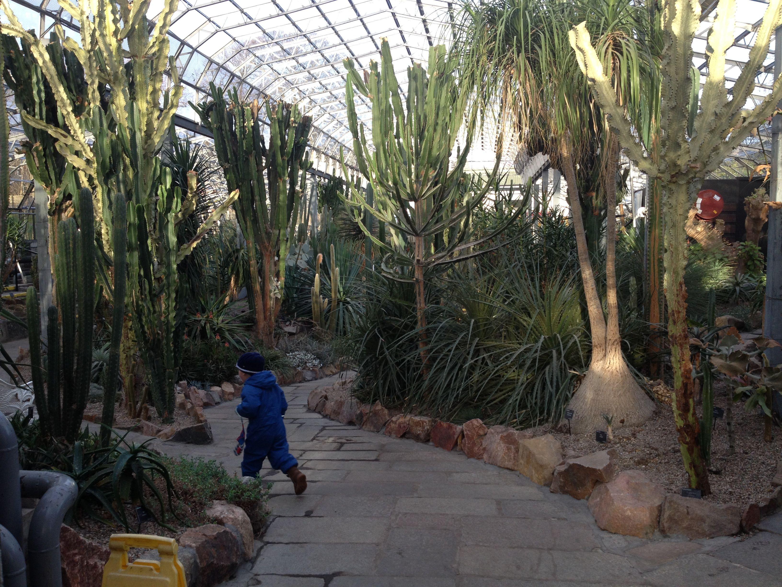 duthie park mummykimmy u0027s blog