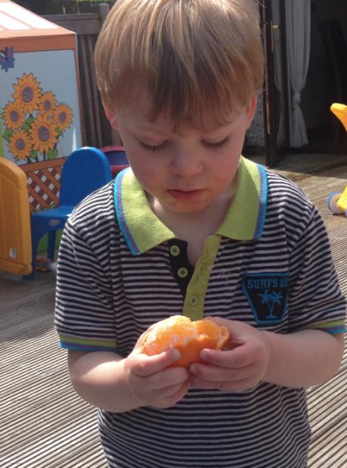 Mummykimmy tangerine peeling