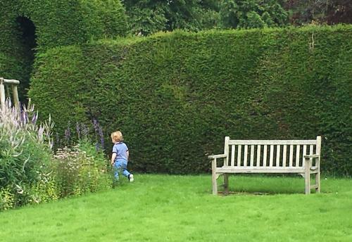 mummykimmy garden